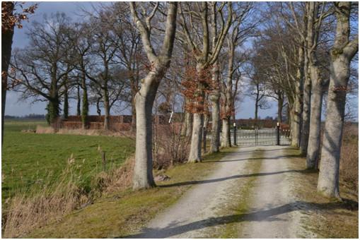 De weg naar de begraafplaats Roderwolde in het verlengde van de Pastorielaan.